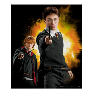 Harry Potter y Ron Weasely Póster