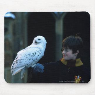 Harry y Hedwig 2 Tapete De Ratón