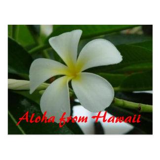Hawaiana de Hawaii Postal