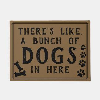 Hay como, muchos perros en amante aquí divertido