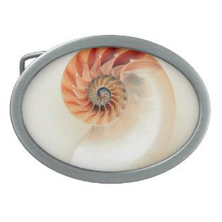 Hebilla De Cinturón Oval Shell de la vida