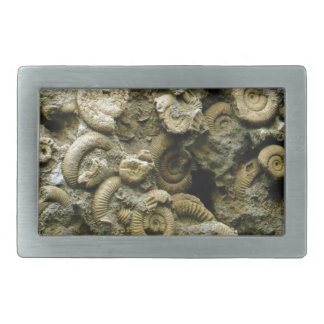 Hebilla De Cinturón Rectangular el fósil descasca arte
