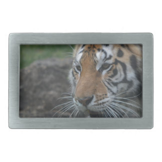 Hebilla De Cinturón Rectangular tigre