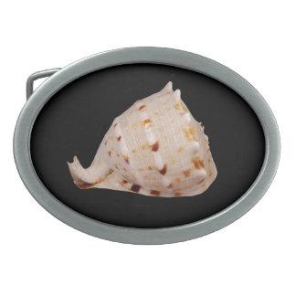 Hebilla del cinturón de Shell de la concha