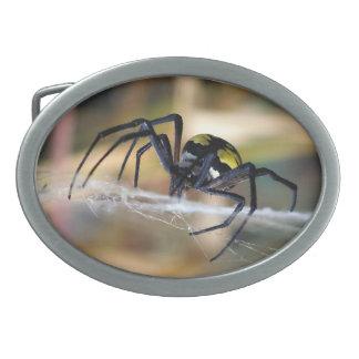 Hebilla del cinturón negra y amarilla de la araña
