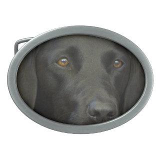 Hebilla Ovalada Perro negro de Labrador