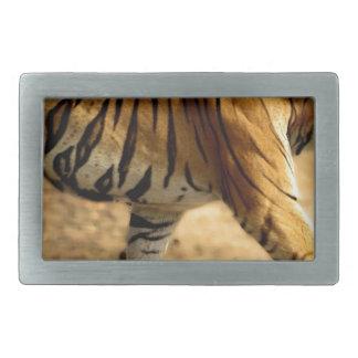 Hebilla Rectangular Acecho de Tigres de los alquileres