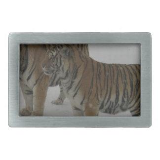 Hebilla Rectangular Alquileres dos tigres siberianos