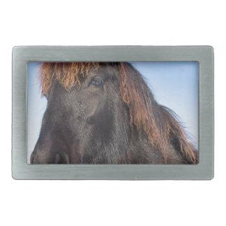 Hebilla Rectangular Cabeza del retrato del caballo negro del Frisian