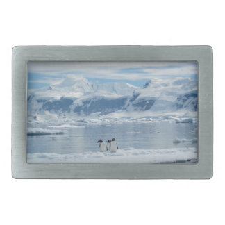 Hebilla Rectangular Pingüinos en un iceberg