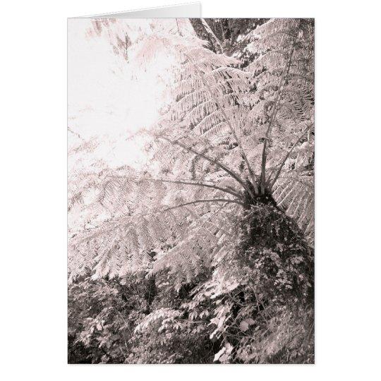 Helecho de árbol monocromático tarjeta de felicitación