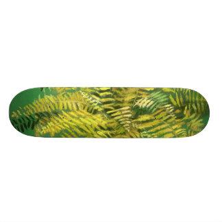 Helecho, frondas, verdor amarillo de oro floral, monopatín 21,6 cm