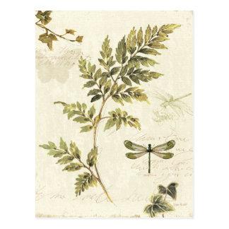 Helechos decorativos y una libélula postal