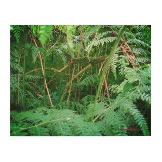 Helechos del bosque en el panel de madera de