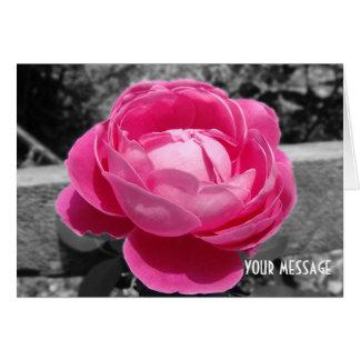 Herencia rosada de Paul Neyron subió Tarjeta De Felicitación