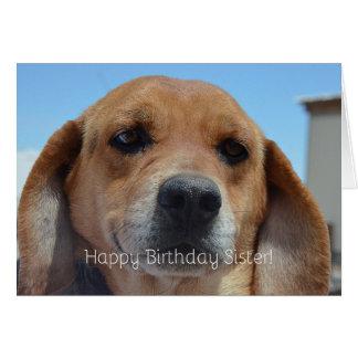 ¡Hermana del feliz cumpleaños! Beagle Tarjeta De Felicitación