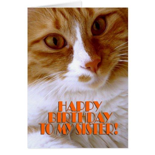 Hermana del feliz cumpleaños - gato dulce tarjeta