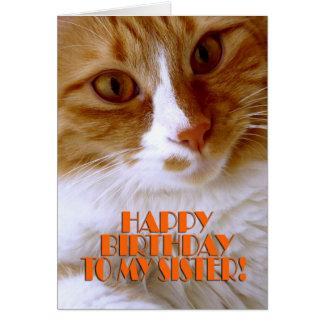 Hermana del feliz cumpleaños - gato dulce tarjeta de felicitación