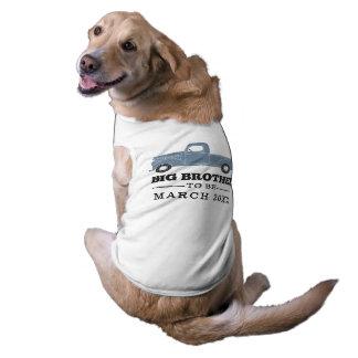 Hermano mayor a ser camisa del perro