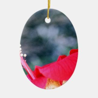 Hibisco 4 adorno navideño ovalado de cerámica