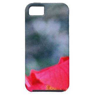 Hibisco 4 iPhone 5 protectores