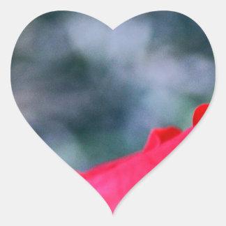Hibisco 4 pegatina en forma de corazón