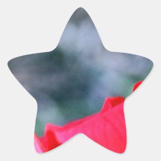 Hibisco 4 pegatina en forma de estrella