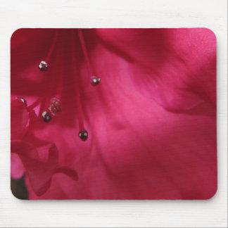 Hibisco de color rosa oscuro Mousepad Alfombrilla De Ratón