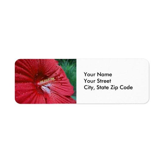 Hibisco rojo con la etiqueta del remite de las etiquetas de remite