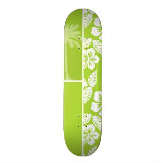 Hibisco tropical verde cítrico Palma del verano Patín