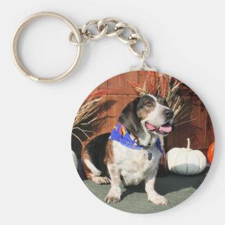 Híbrido Photo-01 del afloramiento del beagle del Llavero Redondo Tipo Chapa