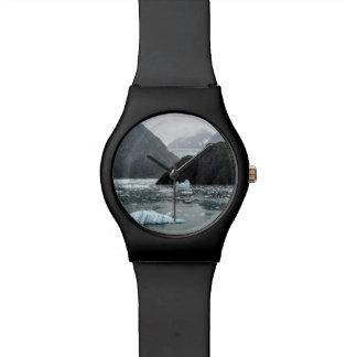 Hielo en reloj del fiordo del brazo de Tracy