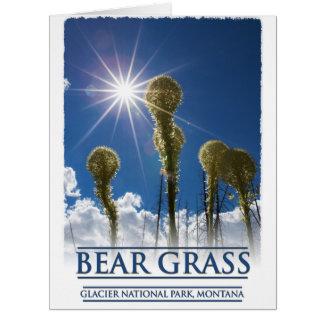 Hierba de oso en el Parque Nacional Glacier Tarjeta De Felicitación Grande