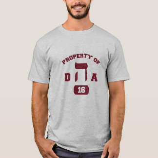 Hillel DHA Camiseta