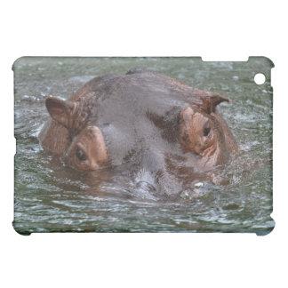 Hipopótamo 8879