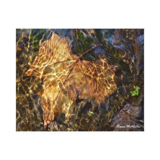 Hoja bajo arte fotográfico del agua