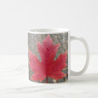 Hoja de arce roja taza de café
