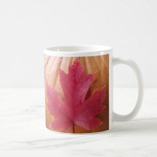 Hoja de la caída de la calabaza taza de café
