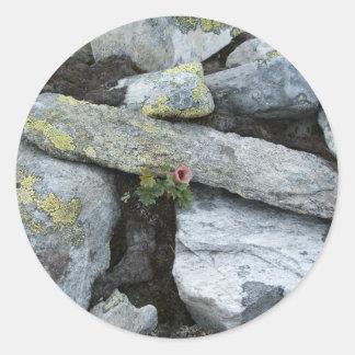 Hoja del pegatina de la flor de la montaña sola