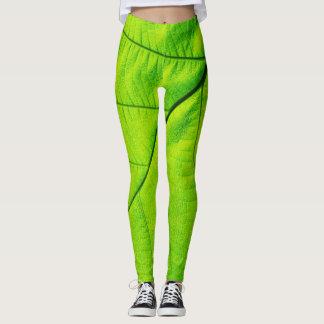 Hoja verde leggings