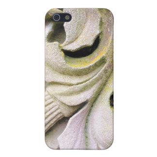 Hojas cubiertas de musgo de la piedra iPhone 5 cárcasas