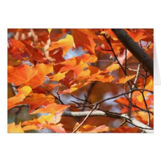 Hojas de otoño 2 tarjeta pequeña