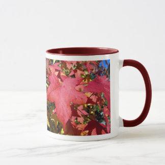 Hojas de otoño del arce rojo taza