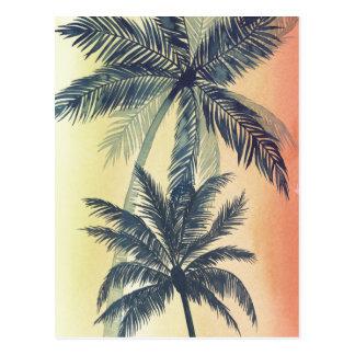 Hojas de palma tropicales postal