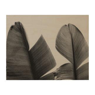 Hojas del árbol de plátano en sepia impresión en madera