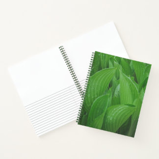 Hojas del Hosta con el cuaderno del jardín de las
