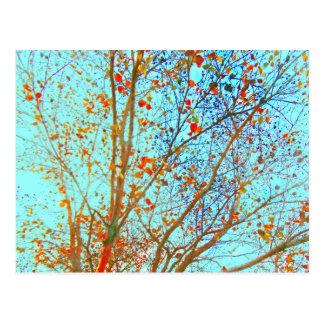 Hojas del naranja del otoño y cielo azul postal