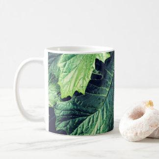 Hojas del rododendro con la taza de los descensos