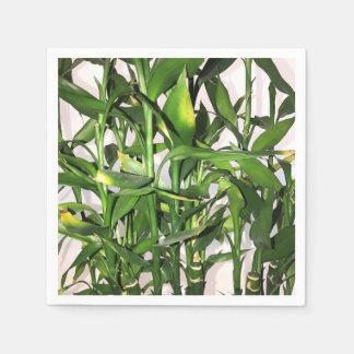 Hojas del verde y planta de la casa de los brotes servilletas de papel