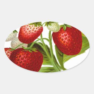Hojas frondosas de la hoja de la fruta de la pegatina ovalada